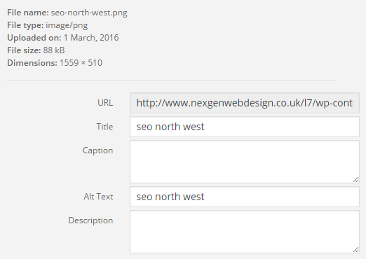 seo north west example